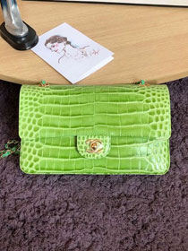 CC original crocodile calfskin flap bag A01112 green